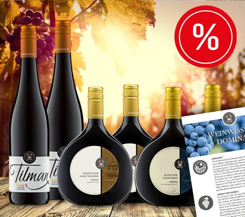 Domina Entdecker Weinpaket