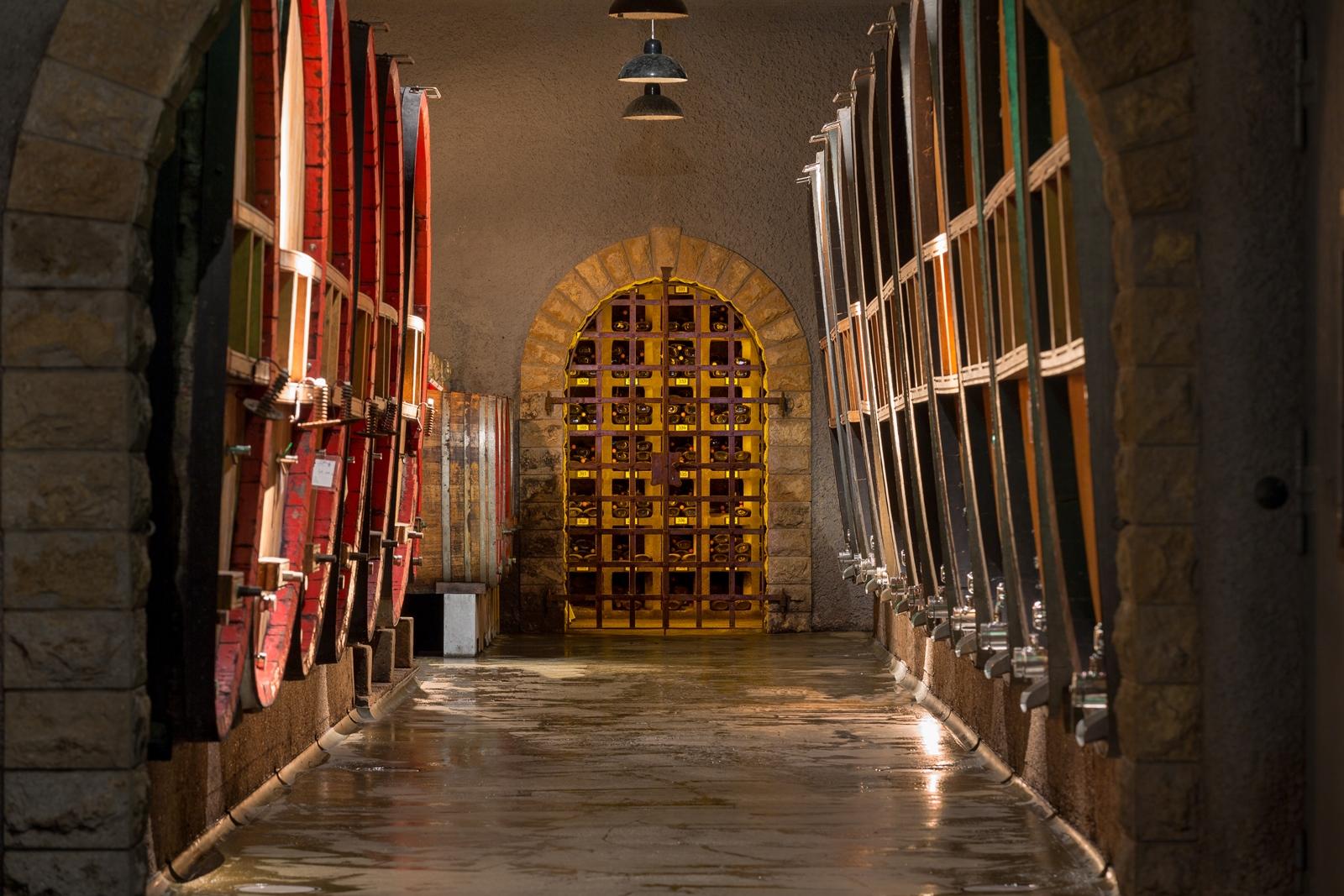 Die Schatzkammer voller wertvoller Weine im Weinkeller der GWF FrankenVinothek.