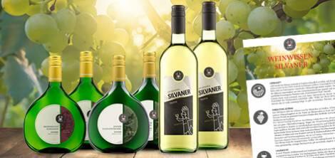 Silvaner Entdecker Weinpaket