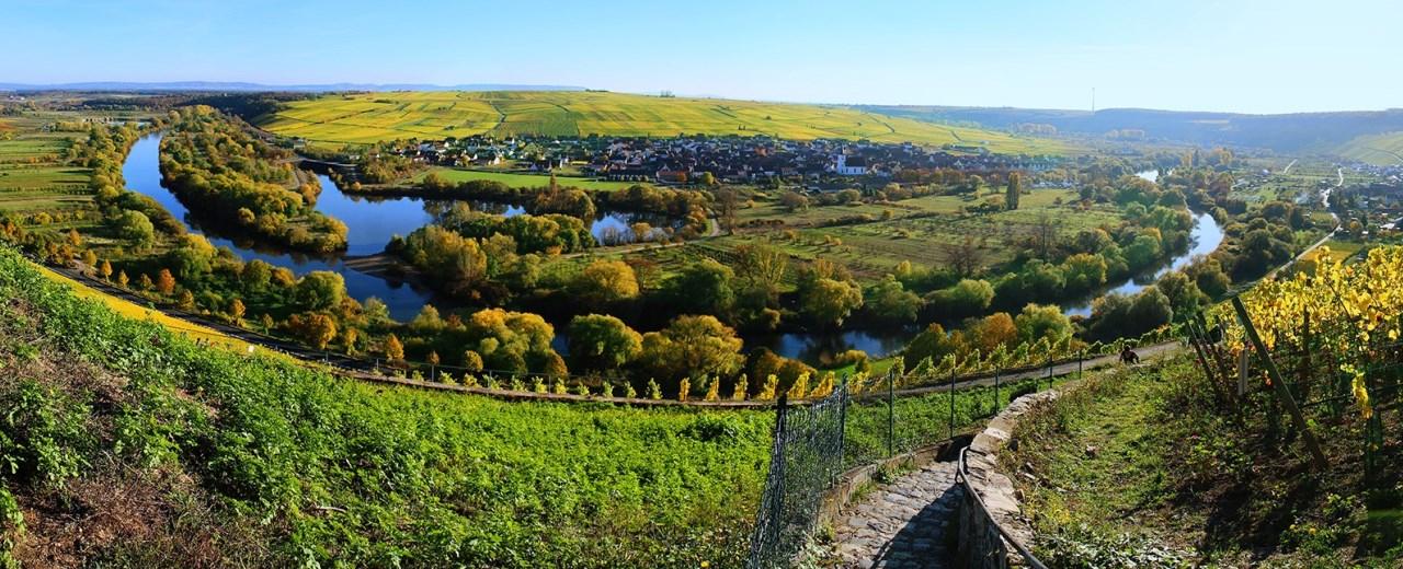 Blick auf die Mainschleife und das idyllische Escherndorf