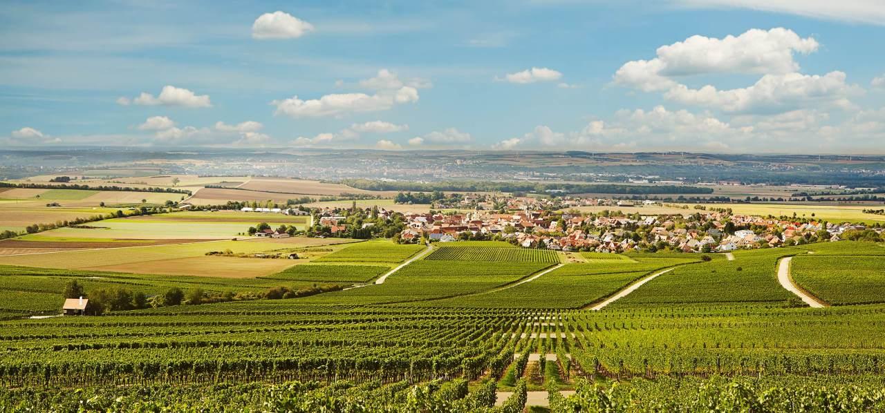 Blick von den Weinbergen auf das Weinörtchen Rödelsee am  Schwanberg