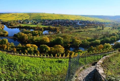 Blick auf das idyllische Escherndorf an der Mainschleife