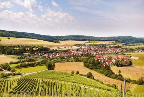 Blick von den Weinbergen auf das Weinörtchen Reicholzheim im lieblichen Taubertal.