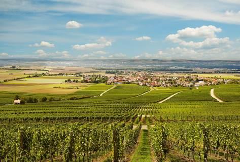 Blick von den Weinbergen auf den Weinort Rödelsee am  Schwanberg
