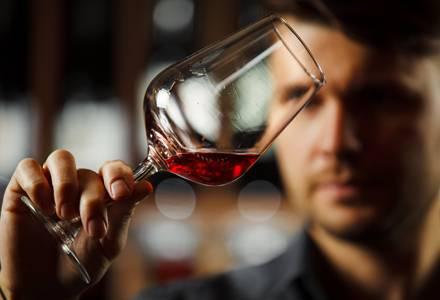 Gehaltvolle Rotweine aus Franken und Tauberfranken